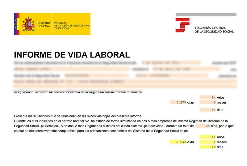 vida laboral pdf
